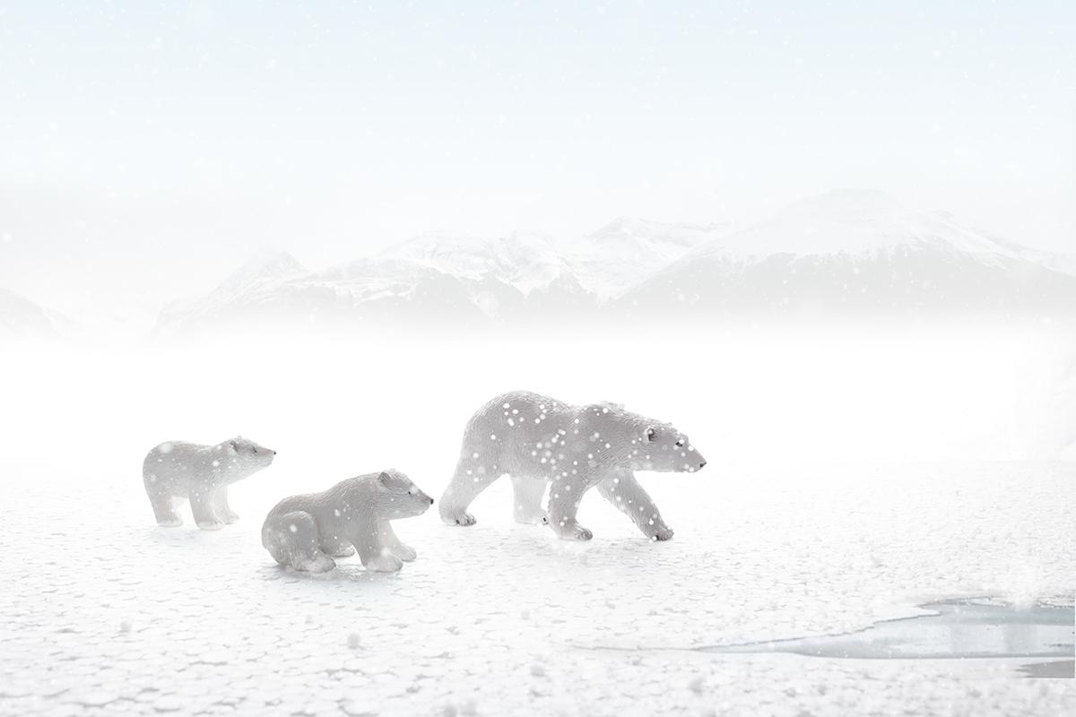 Amrelshamy photoshop FINEART poster pola snow Ocean inspire Landscape photomanipulation