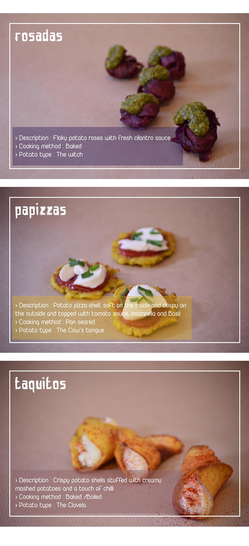 capmpaign design Exhibition Design  recipe development research art direction  ILLUSTRATION