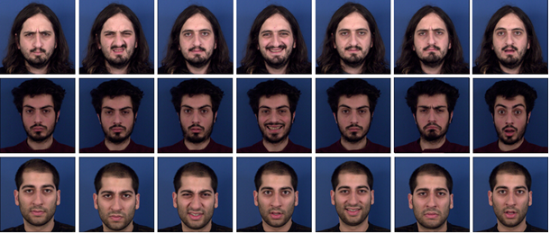 Facial expression recognition phd thesis