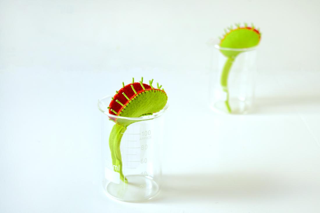 Venus Flytrap Brooches on Behance