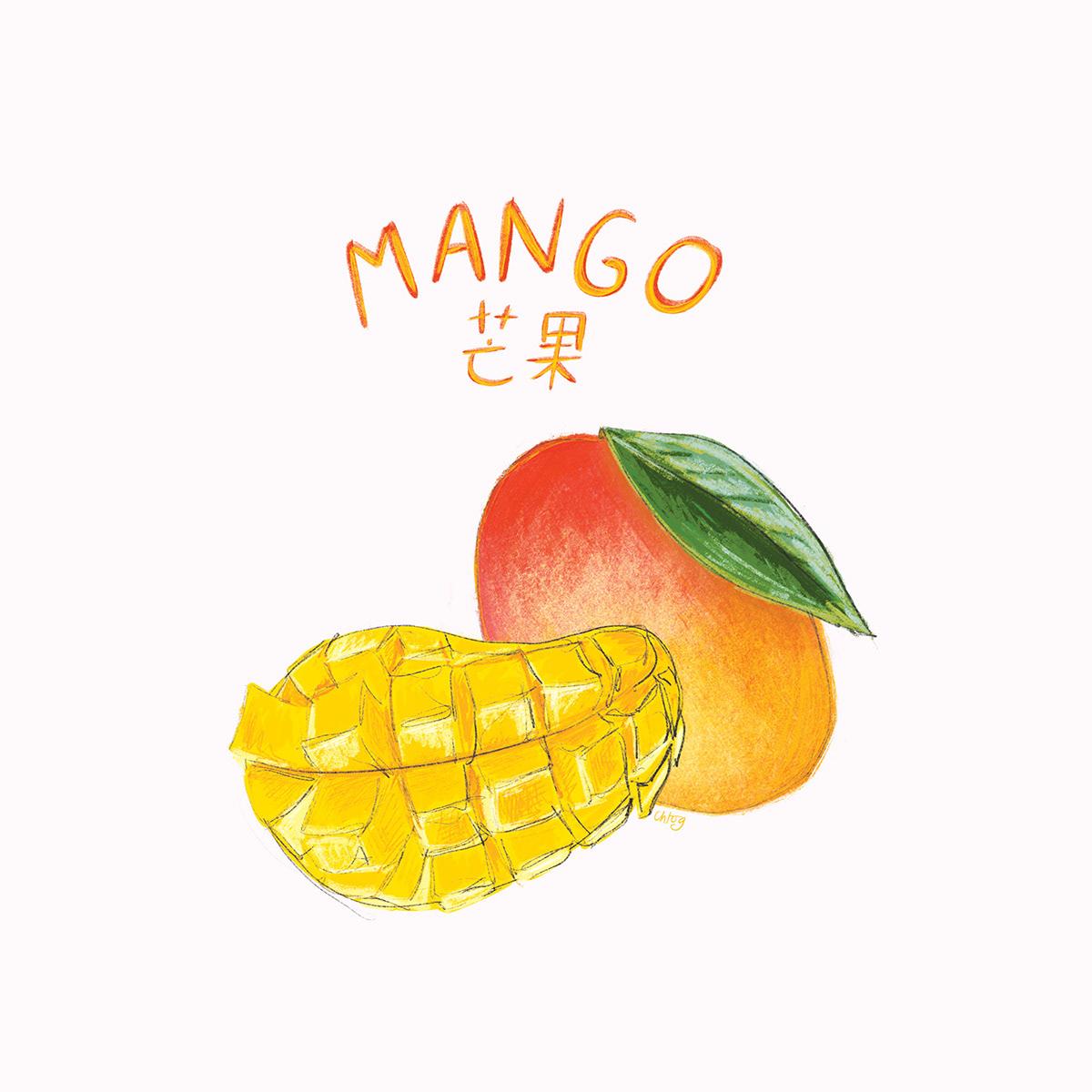 Taiwan Fruits - Digital Illustrations on Behance