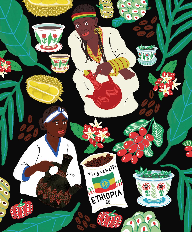 tiger oriental Korea Coffee Brazil ethiopia africa colour Nature tribe