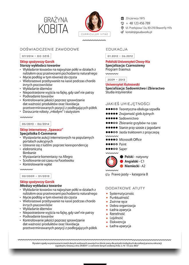 CV PORTFOLIO on Behance