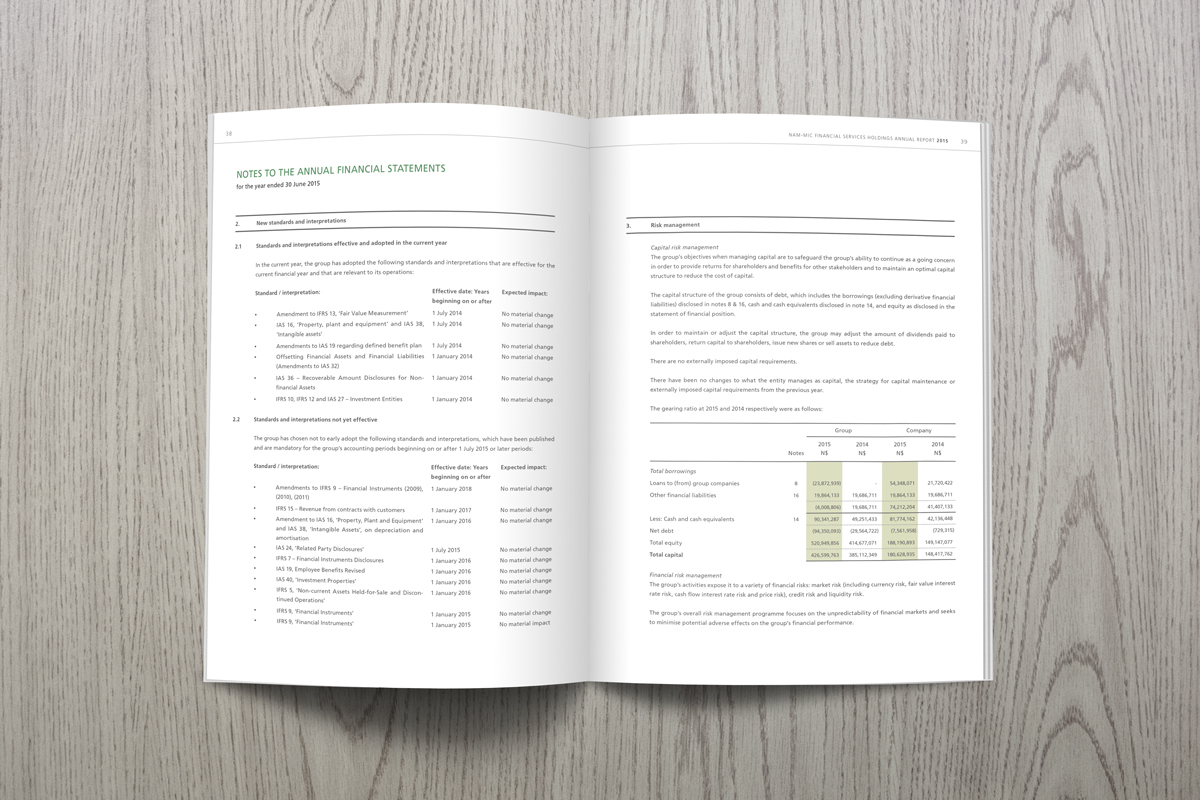 annual report Layout Design