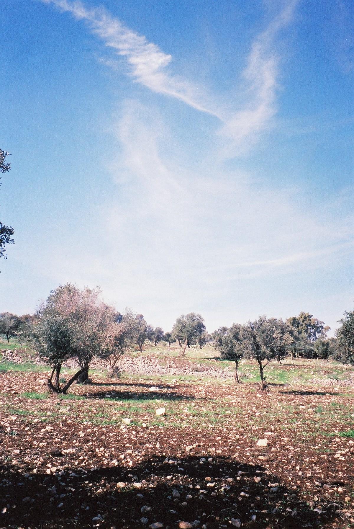 galilee israel