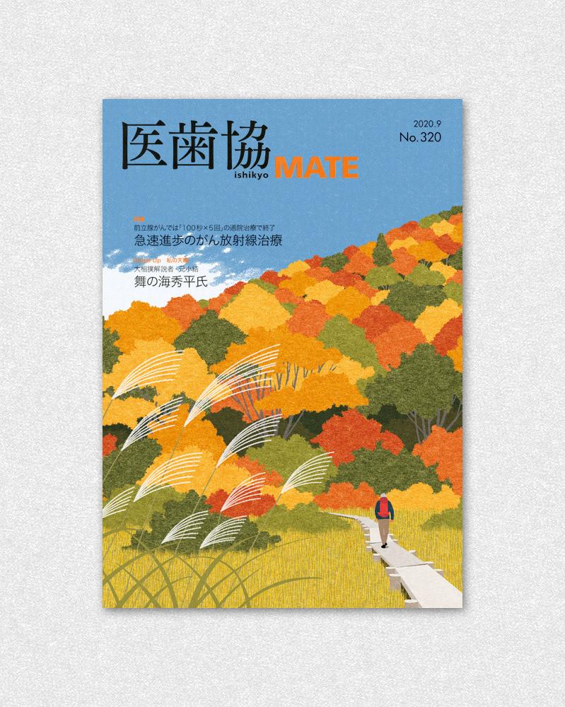 autumn autumn colors autumn tints Fall Landscape red leaves Trek trekking yellow leaves
