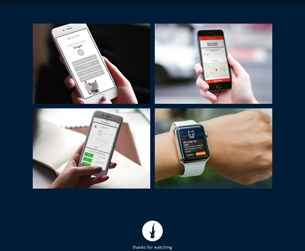 iphone Pet Interface app concept