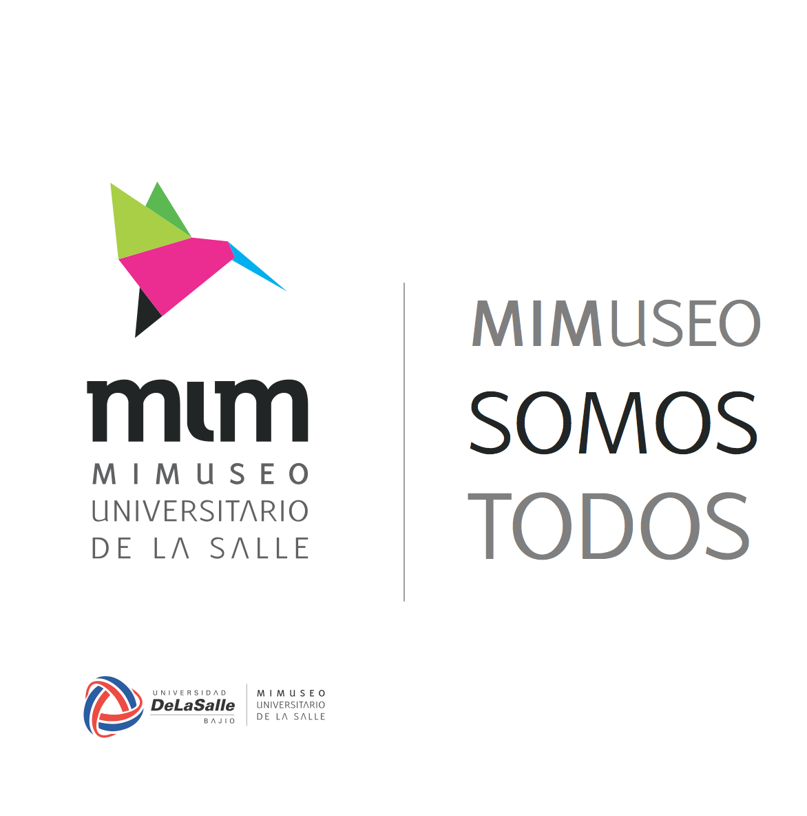 MIM  museo   museum salle  mimuseo salle