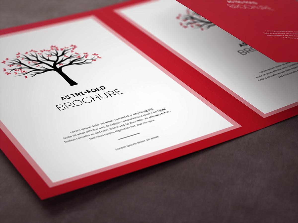 Tri-Fold Brochure A5 Mock-up on Behance