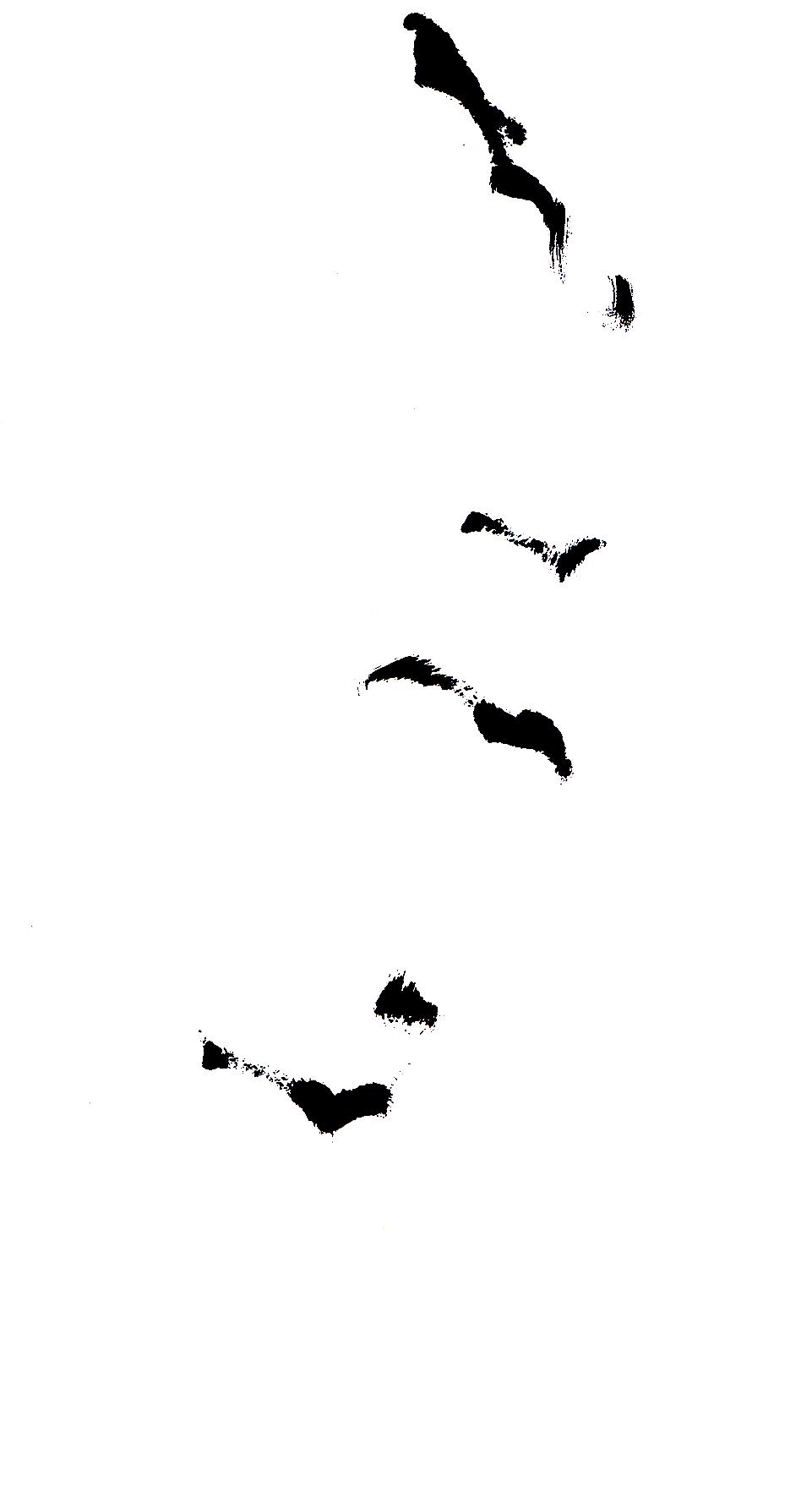 black & white ink minimal Expressionism line