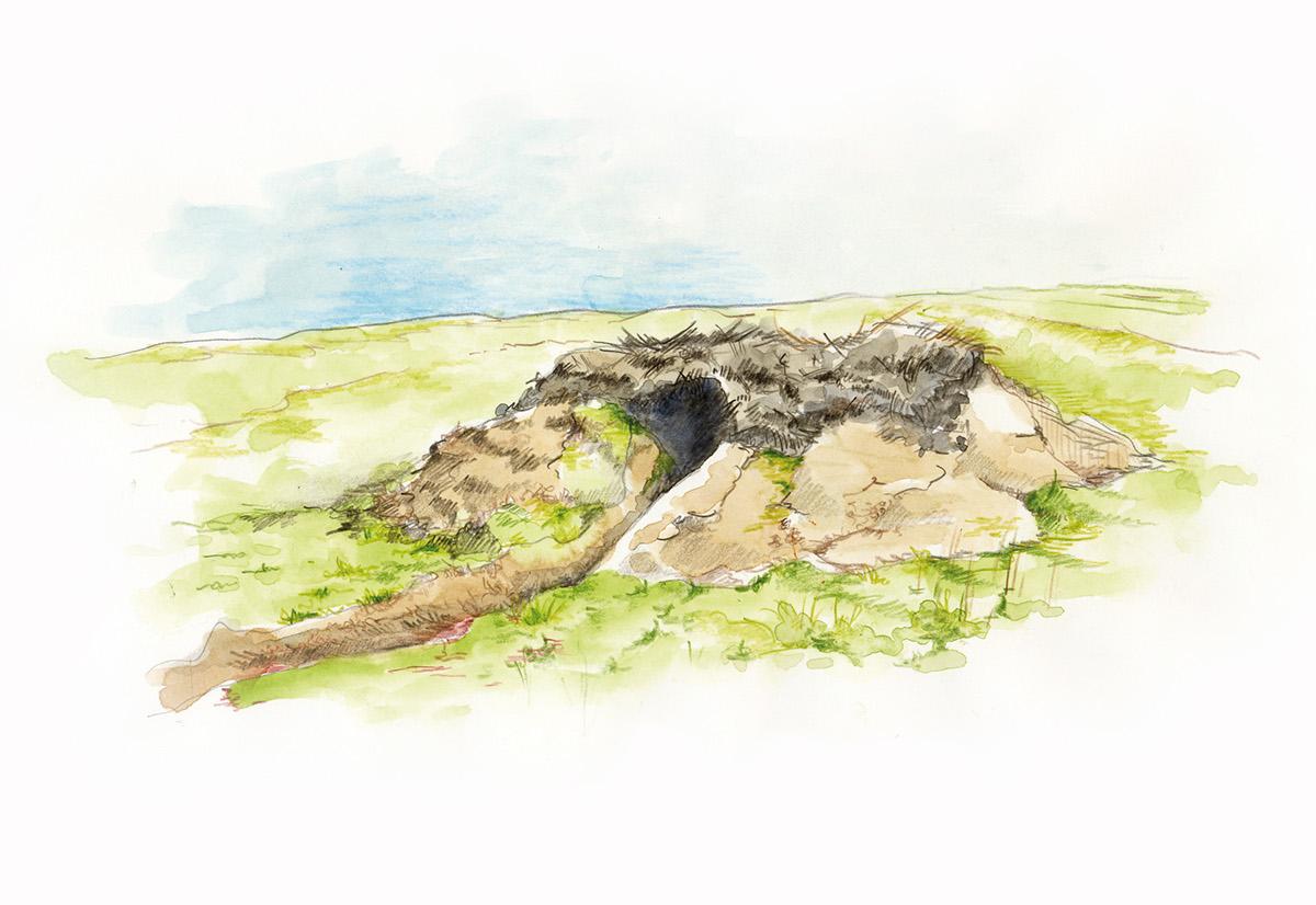 tra illustration aquarelle paysage campagne Tourisme
