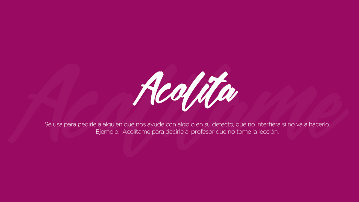 Lenguaje Ecuador jerga manual cultura popular