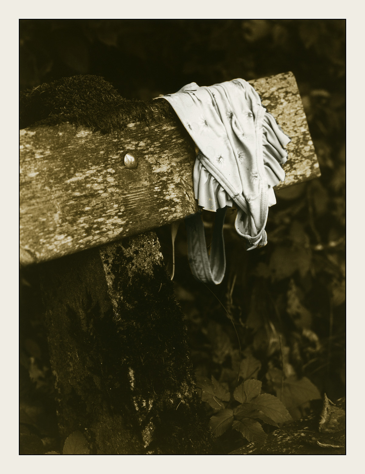 Adobe Portfolio mankind people trash Nature film photography darkroom