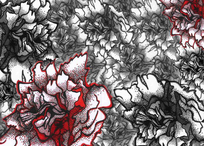 Desenho P&B graphicartwork Ilustração Gráfica desenho de peônias estampa floral art direction  Direção de arte annefreitasdesign Estampa oriental design de produto