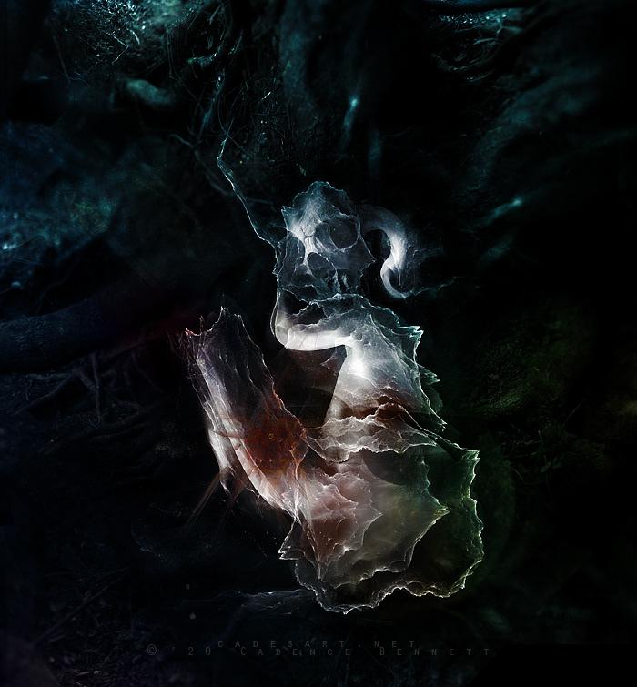 dark dark art dark surrealism surreal photomanipulation Dark Forest forest skull Heavy metal