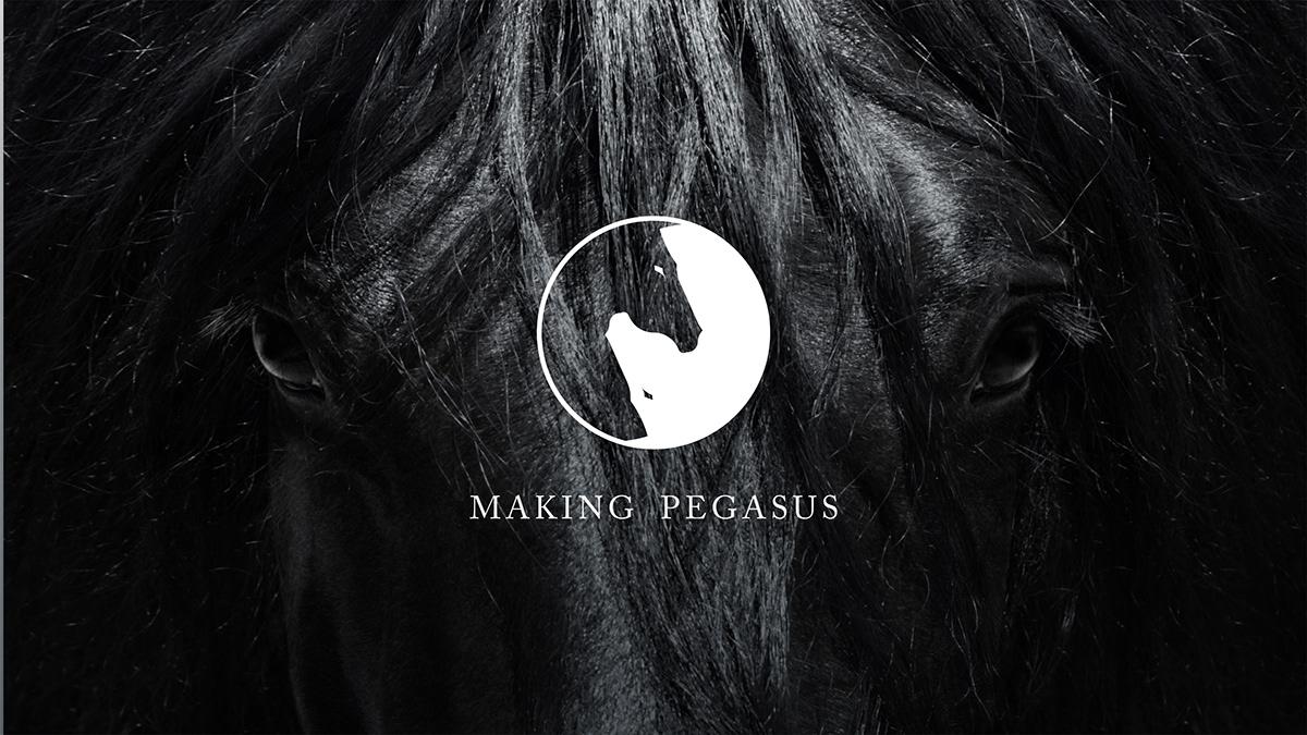 horse equestrian logo branding