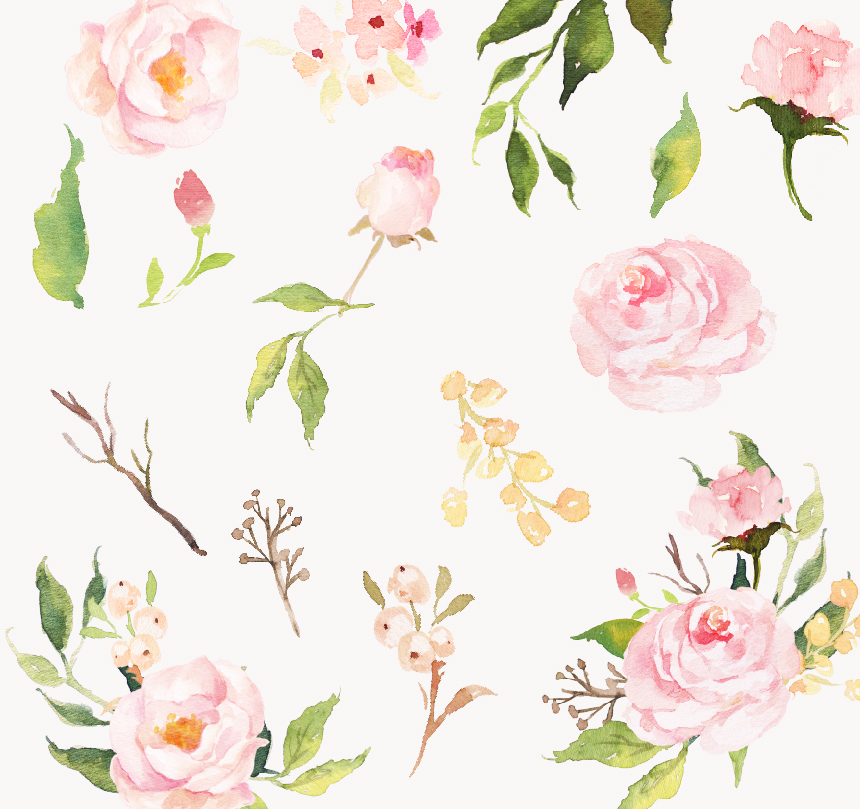 Watercolor flower Clip Art-Gradual Blooms on Behance
