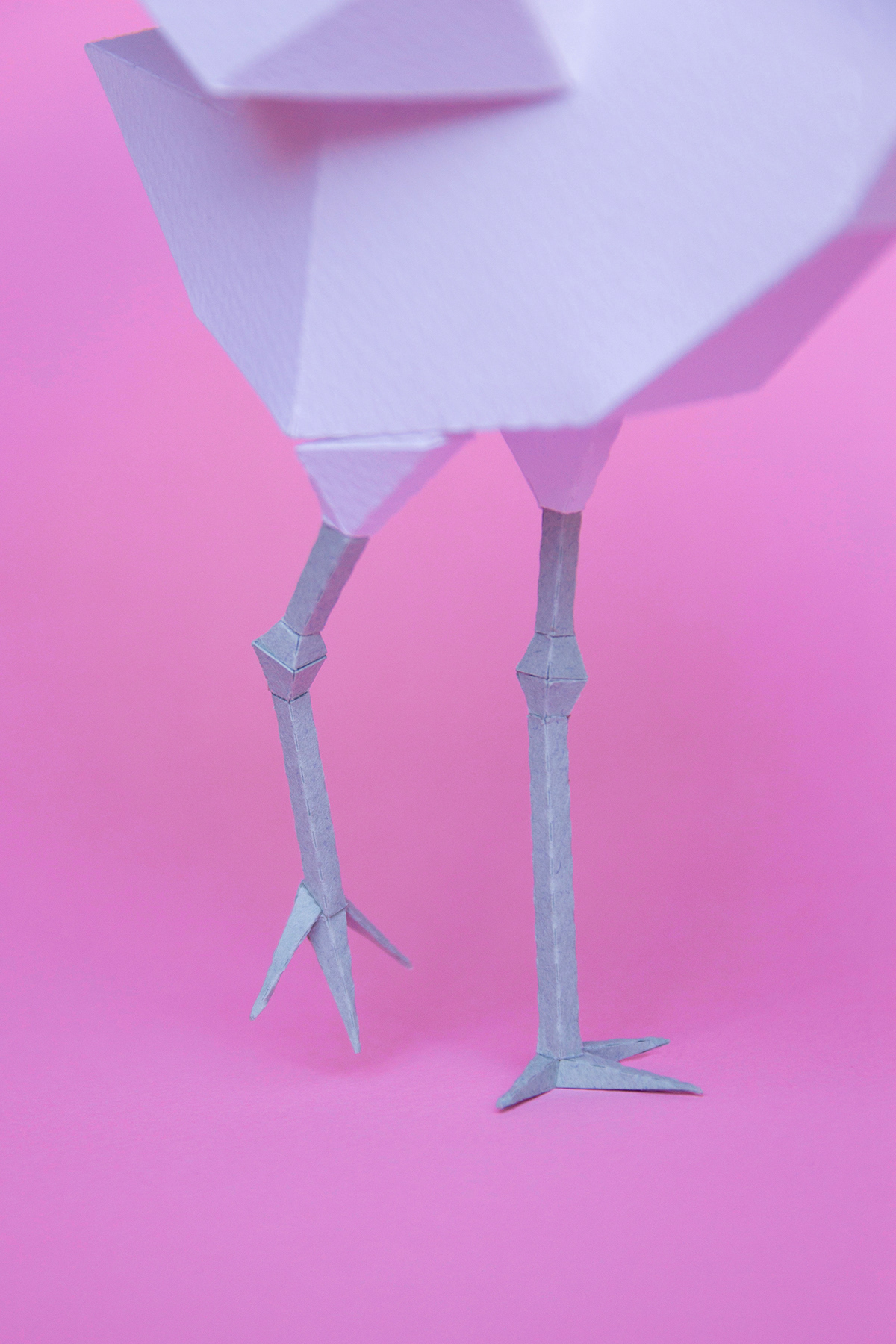 paper craft guardabosques yaniguille typedesign meerkat crane Bumblebee