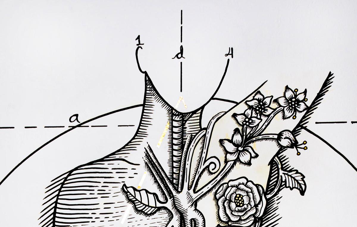 Female study anatomy - Mural on Behance