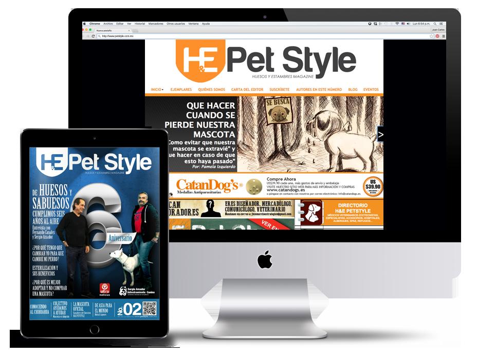revista Diseño editorial ilustracion Diseño web
