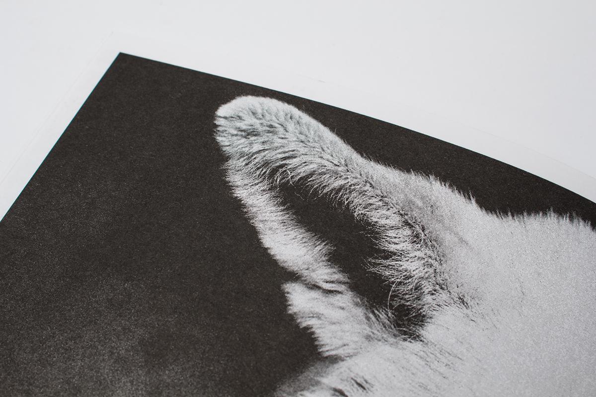 dogs ukraine ukrainian Zine  Riso risograph black and white politics