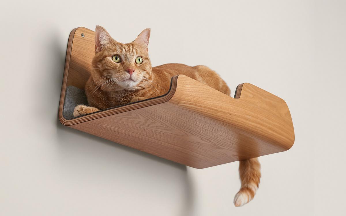 bentwood CatFurniture catperch furniture midcentury minimal Perch Pet plywood Scandinavian