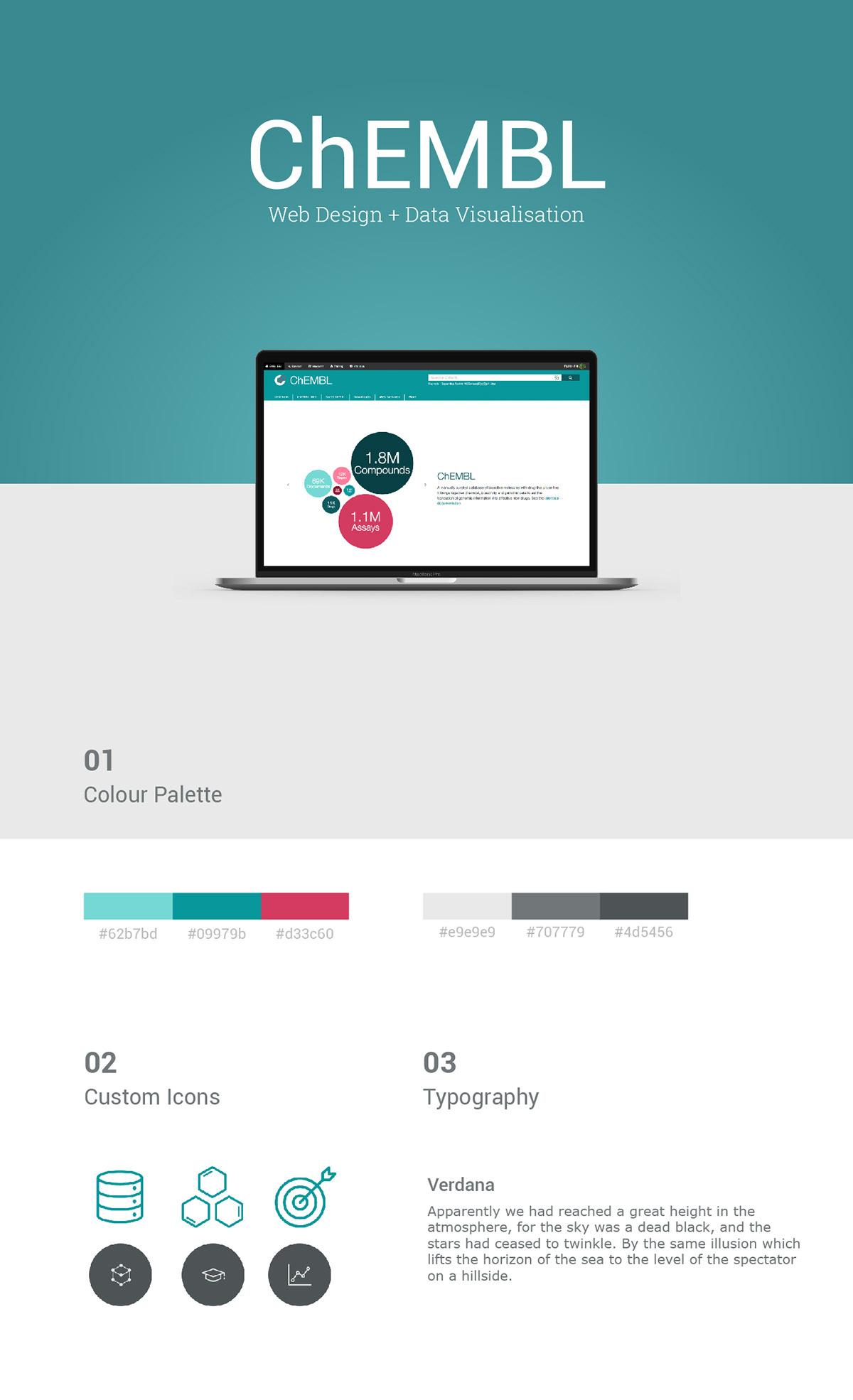 data visualisation data visualization Web Design  web development  branding  coding programming  d3.js JavaScript