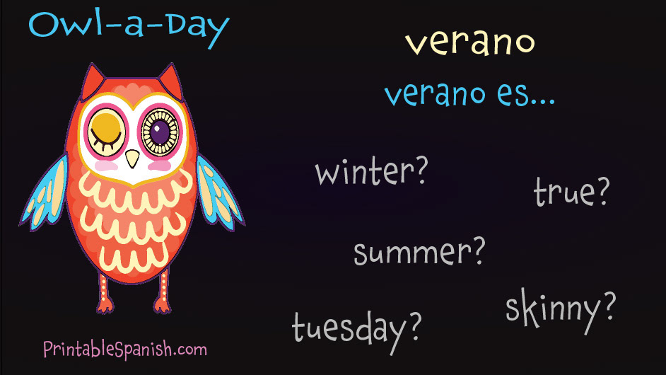picture about Printable Spanish.com known as Owl-a-Working day Spanish Vocab upon Behance