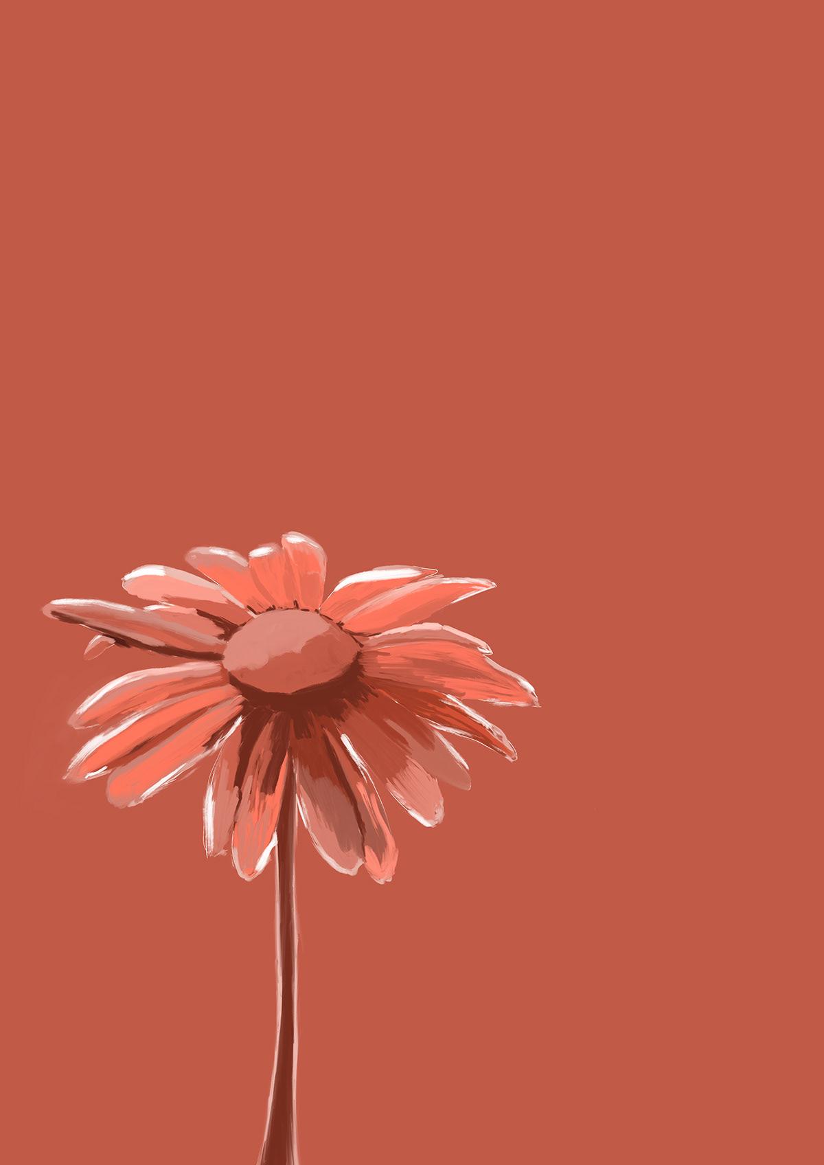 design flower ILLUSTRATION  monochrome poster