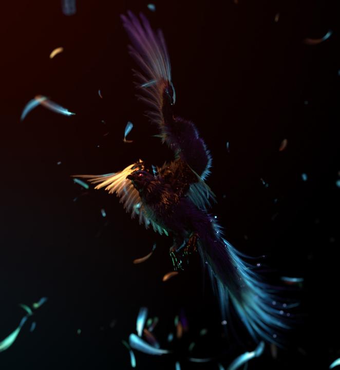 wacom bird feathers experimental cg
