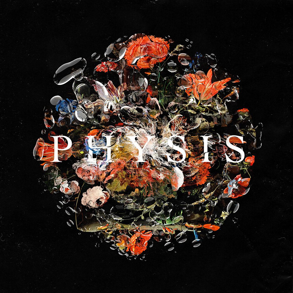 Album album art cover Flowers Glitch music Physis uruguay vinilo vinyl
