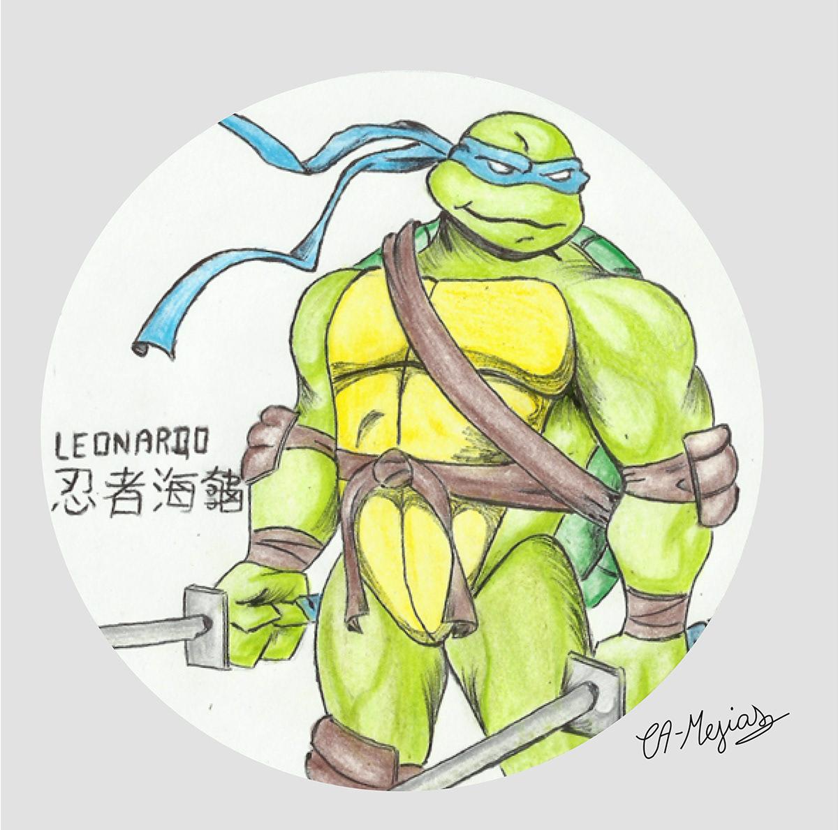 Colección De Las Tortugas Ninja 2003 On Pantone Canvas Gallery