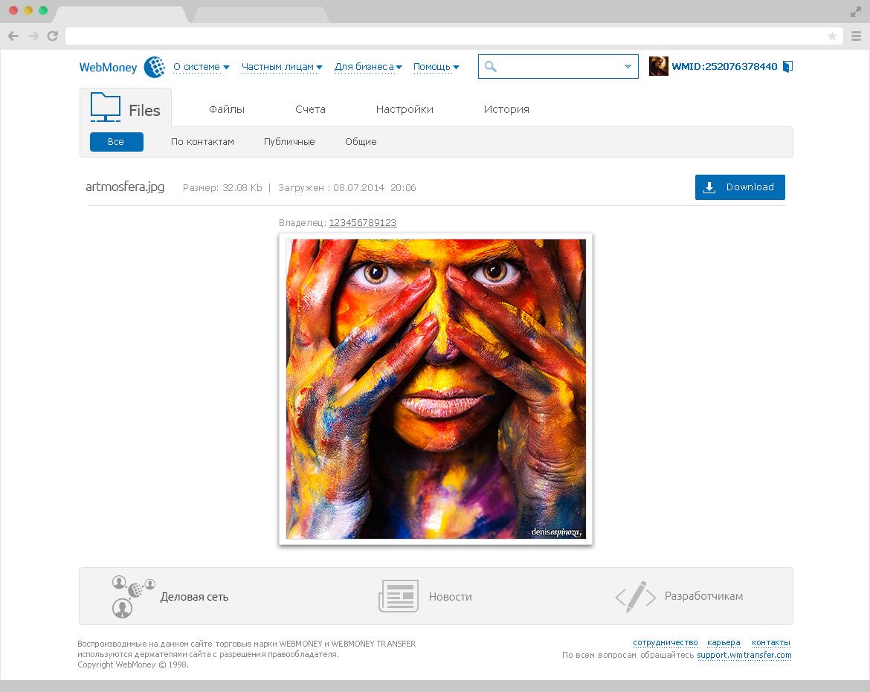 webmoney Web money wmtransfer UI ux Interface denis Espinoza denisespinoza