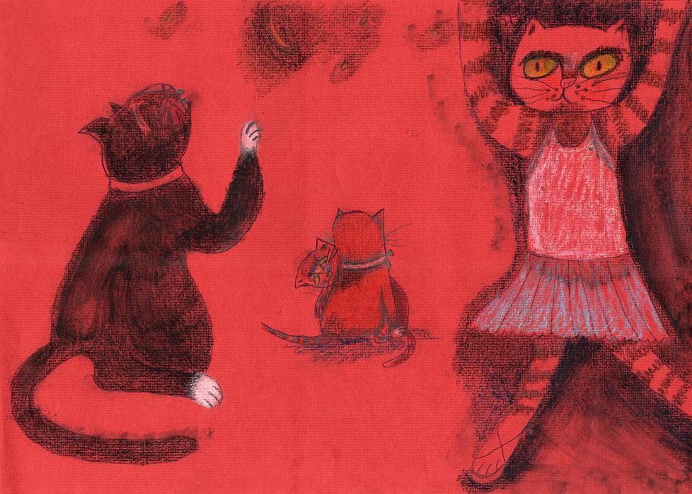 gatos baile