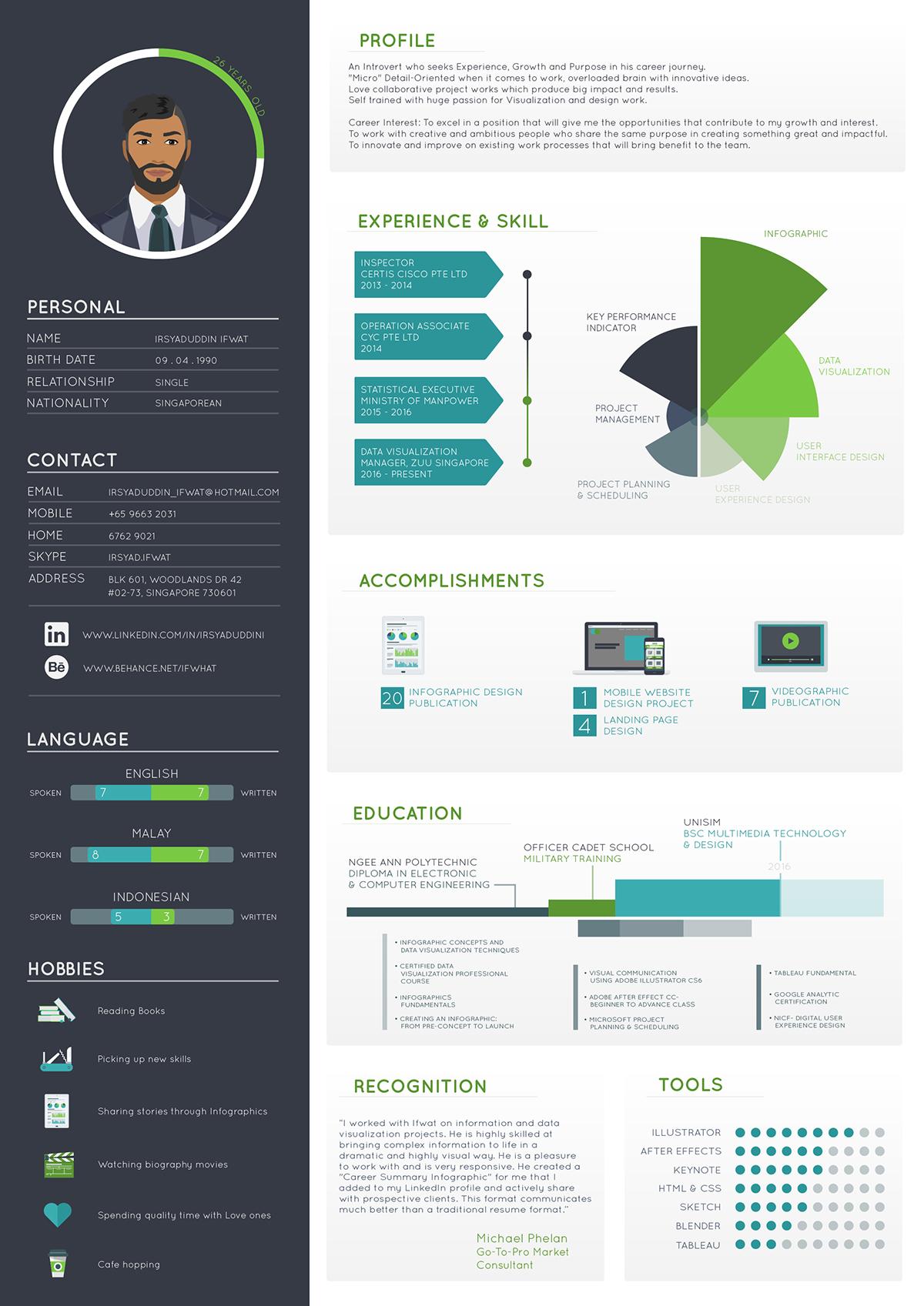 infographic resume infographic cv Creative Resume information design resume CV infographic curiculum vitae infographic data visualization