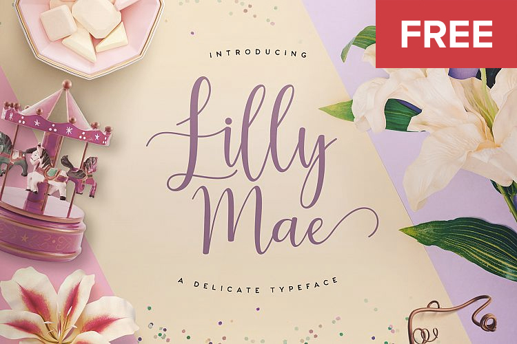 Free font lilly mae on behance
