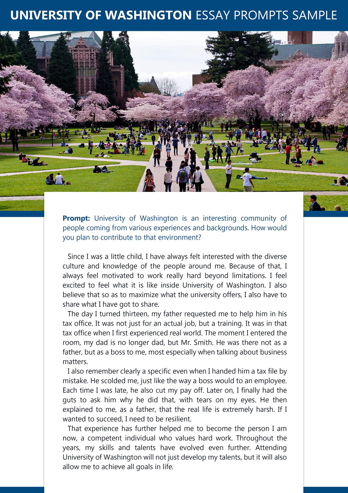 washington university essay prompt