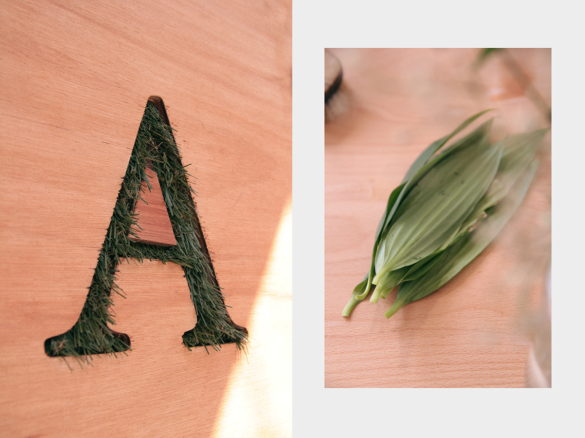minimal Flora brand logo identity design BsAs unbarco market flower tienda ilustracion arg