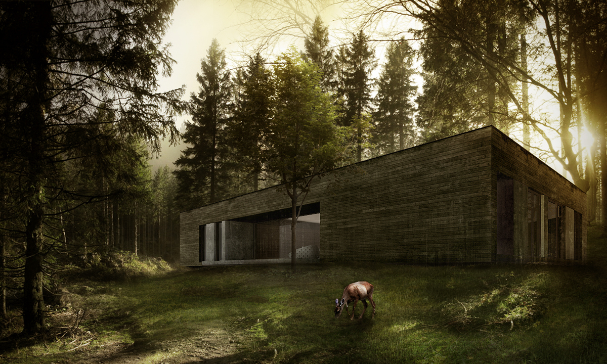 House In Forest Pulawy Poland On Behance