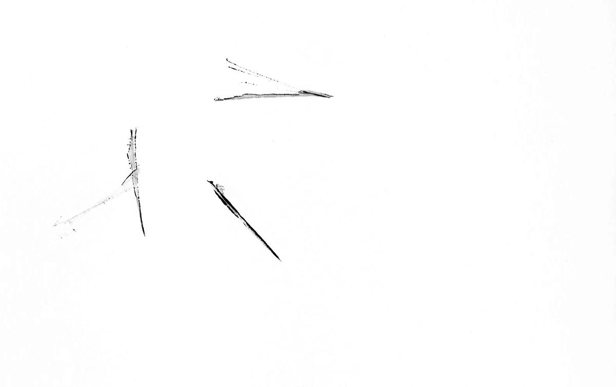 black & white minimal ink line