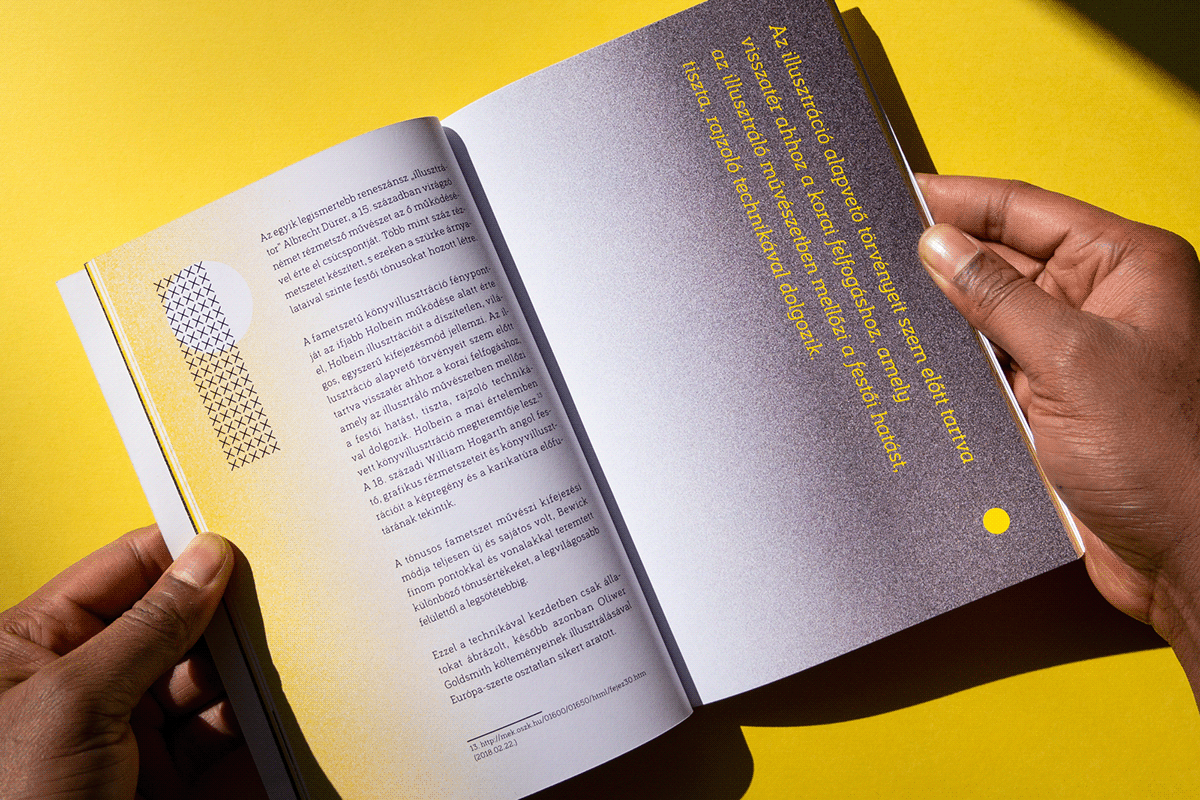 book Bookdesign diploma editorial editorialdesign graphicdesign ILLUSTRATION  Indesin thesis typography