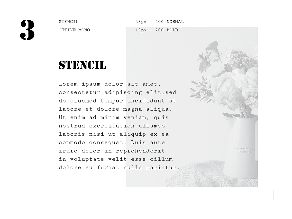 google fonts new different combinations InDesign