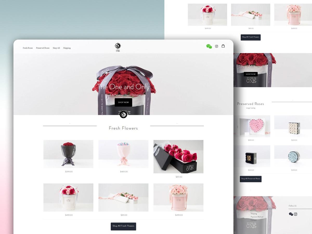 app development Ecommerce HTML CSS Mobile responsive seo friendly Shopify web development  website development