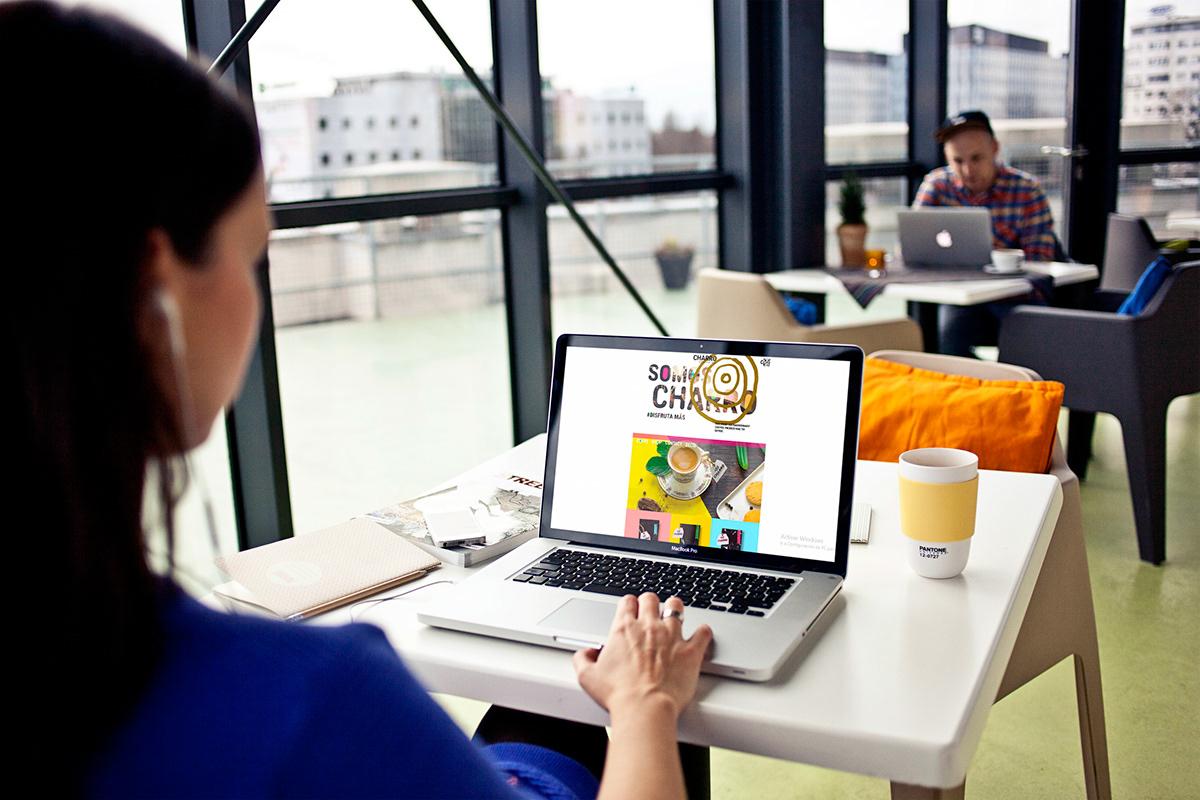 branding  Coffee design Web