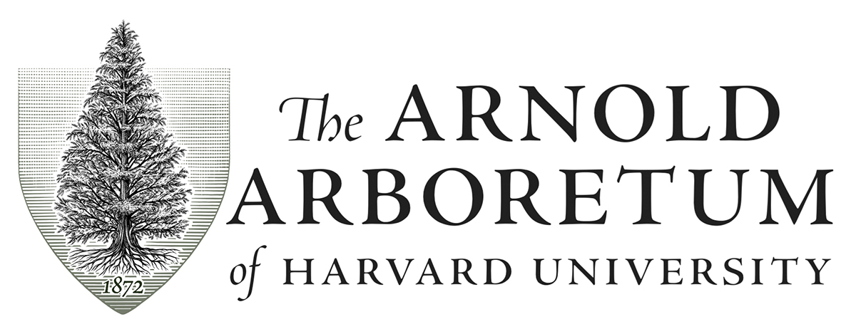 Set Of Brand Tools Their Existing Logo Was Virtually Impossible To Use And Did Not Effectively Establish Relationship Harvard University