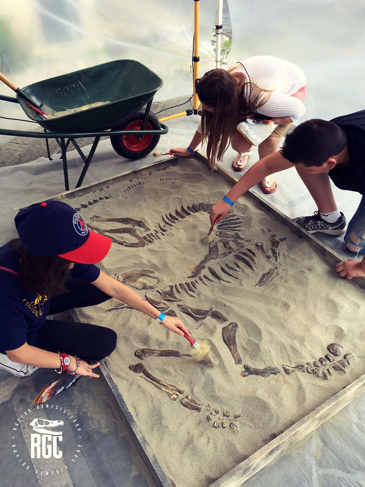 Dinosaur Event educational Students raptor museum Entertainment culture acting