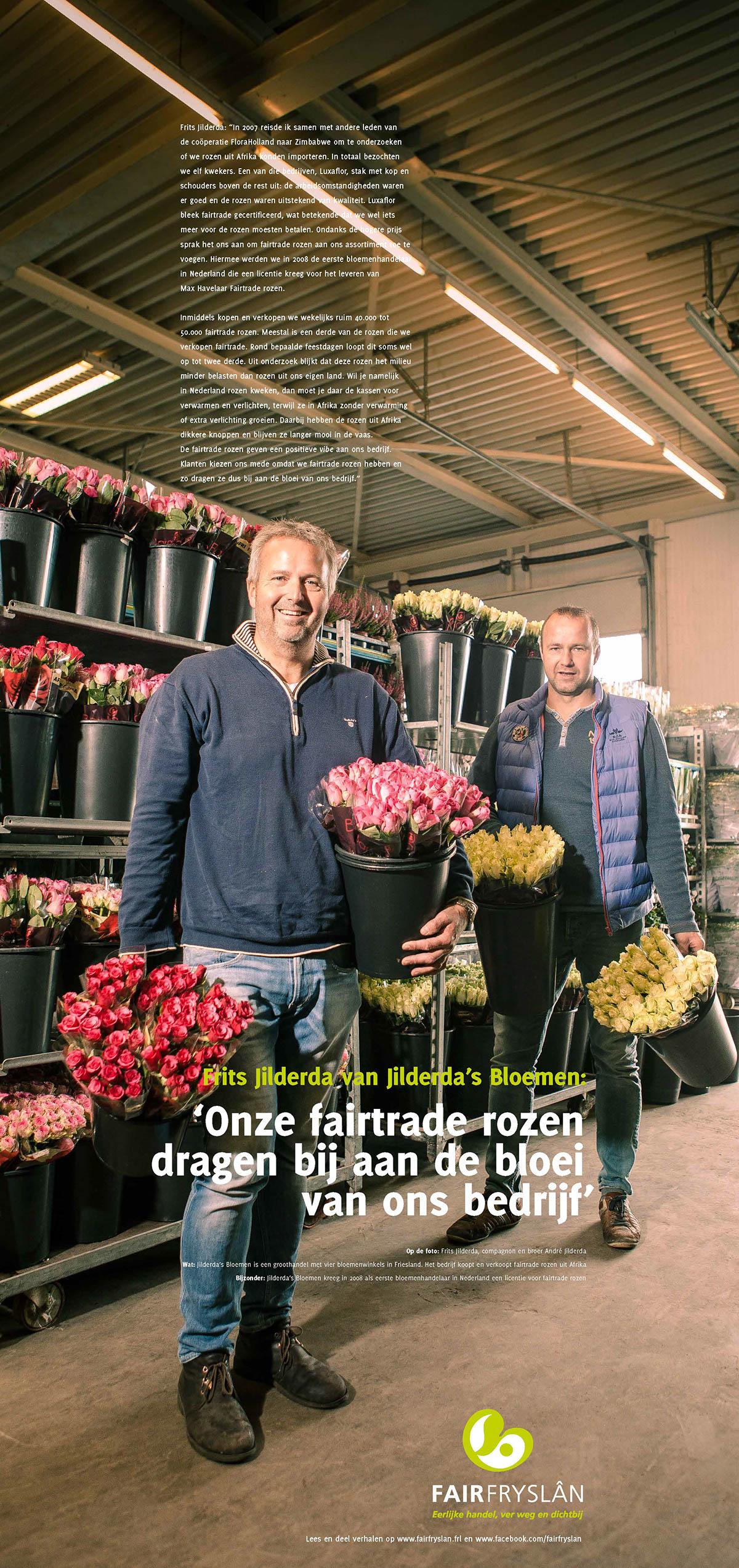 fair fryslan bioweb welcome to the village dutch beans royaal belegd