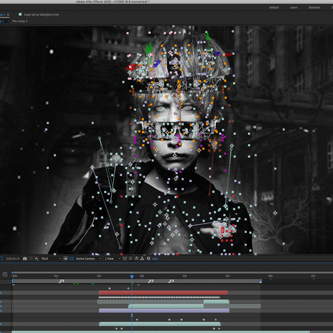 animation  milos rajkovic motion graphics  sholim