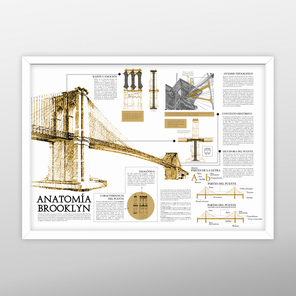 Anatomía Brooklyn on Behance