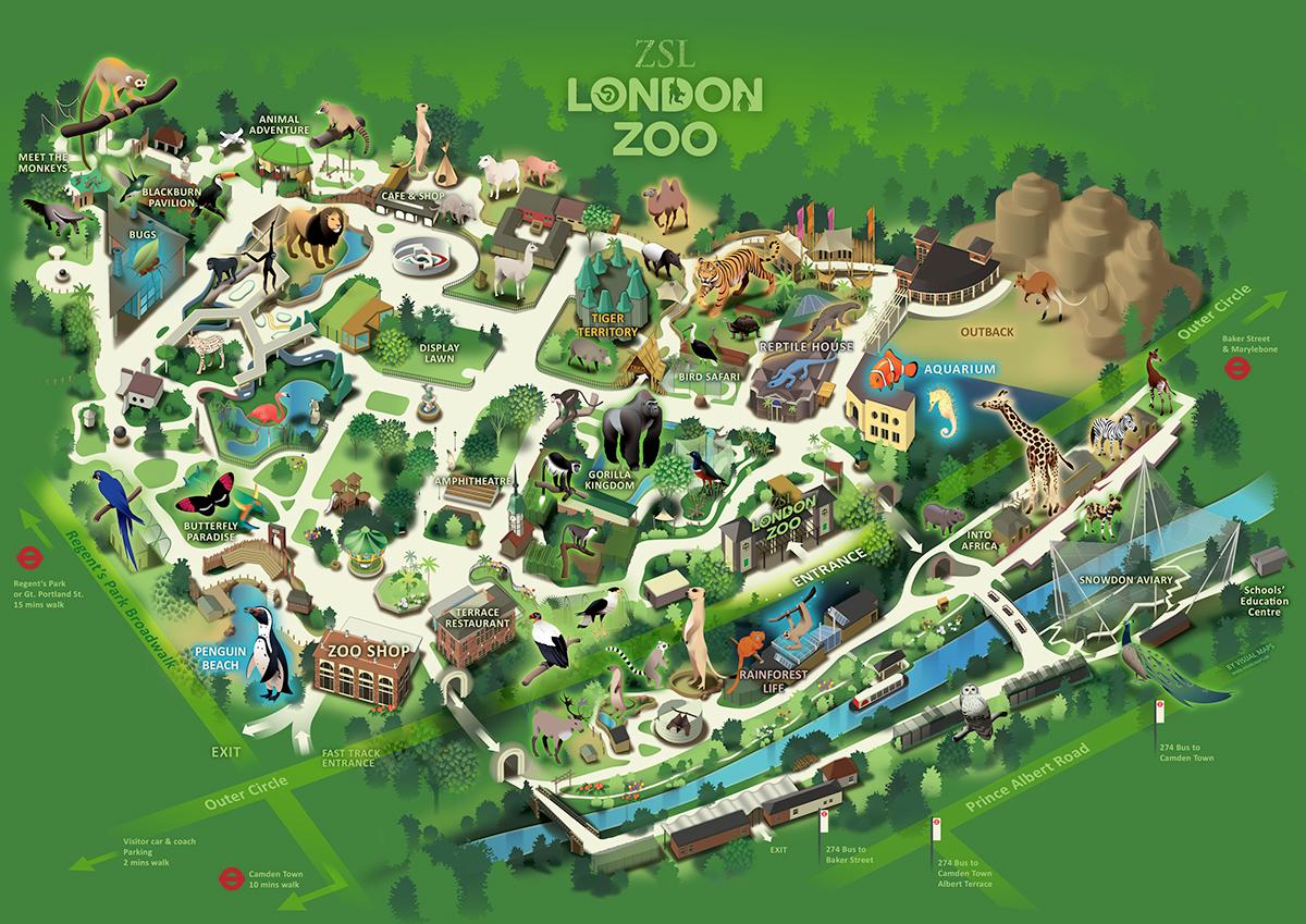London Zoo On Behance